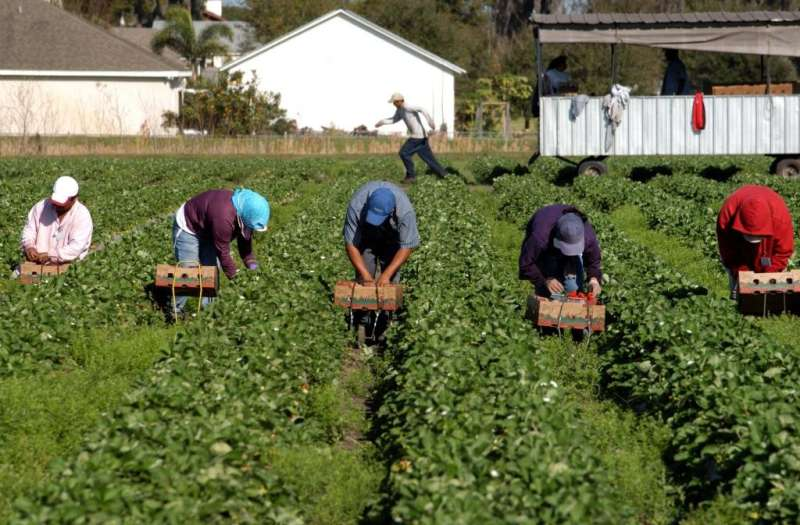 Migrants in rural areas face particular challenges