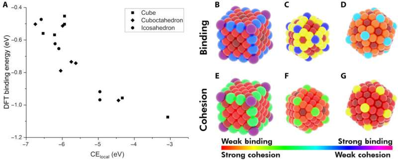 Modeling a model nanoparticle
