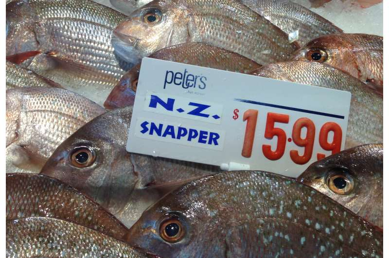 More fishing vessels chasing fewer fish, new study finds