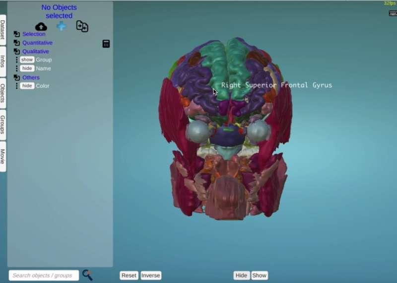MorphoNet offers an interactive way to explore the bioimaging data revolution
