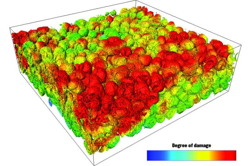 Most detailed X-ray image of batteries yet to reveal why they still aren't good enough [rejected]