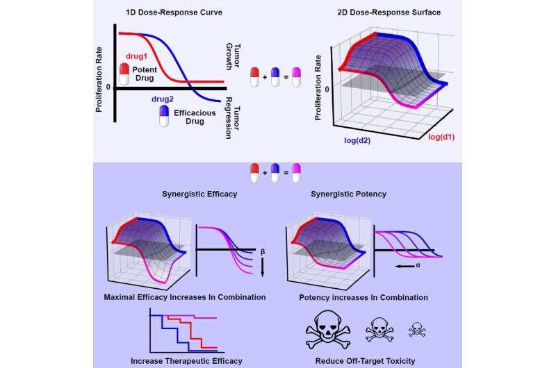 New algorithm calculates drug synergy; initial tests involve melanoma, lung cancer