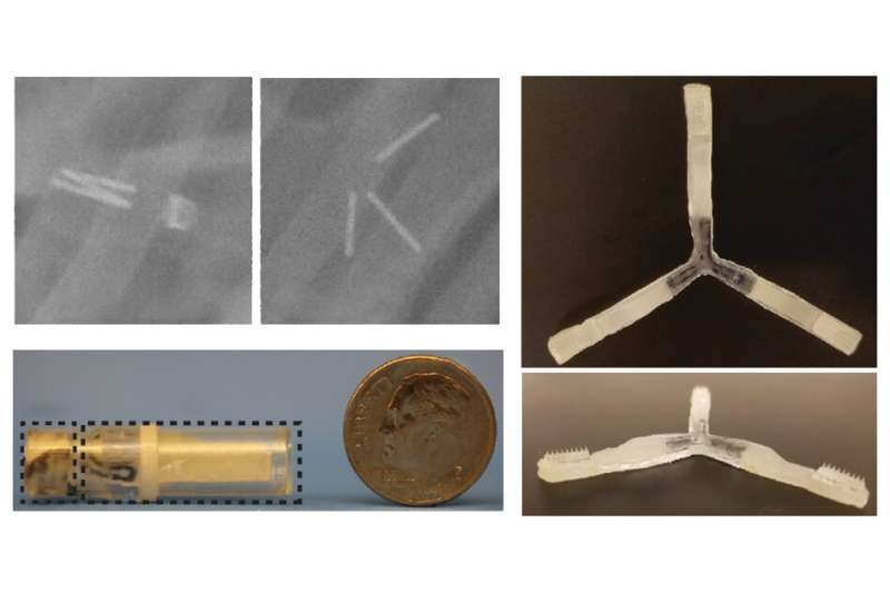 New capsule can orally deliver drugs that usually have to be injected