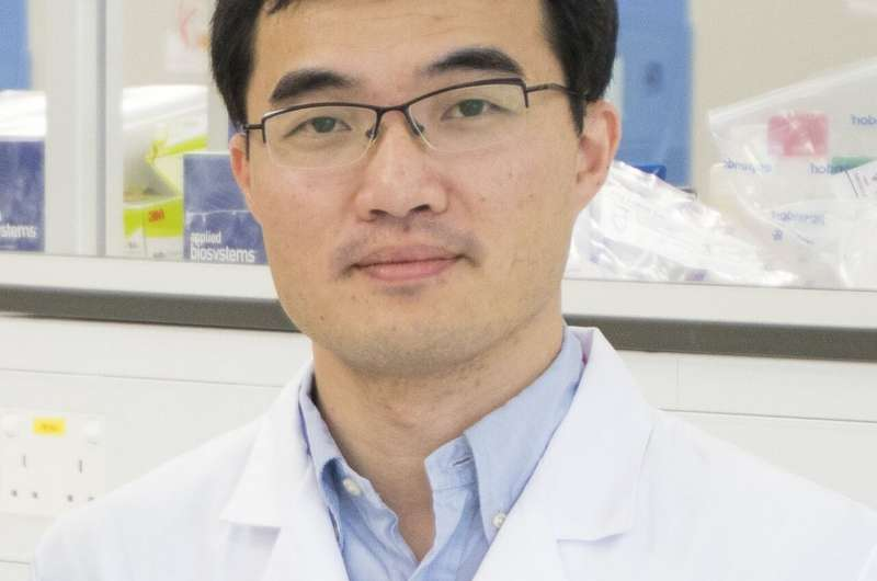 New CRISPR-Cas9 variant may boost precision in gene editing
