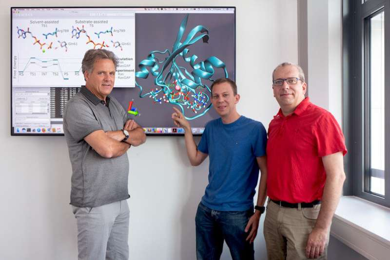 New deactivation mechanism for switch proteins detected