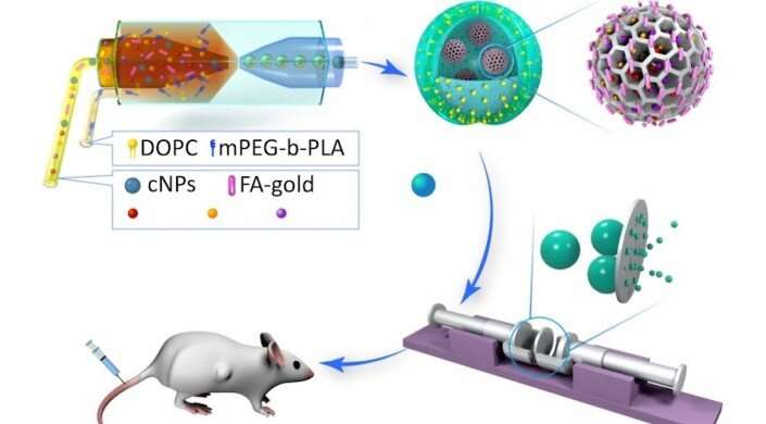 New drug delivery system suppresses tumors in mice