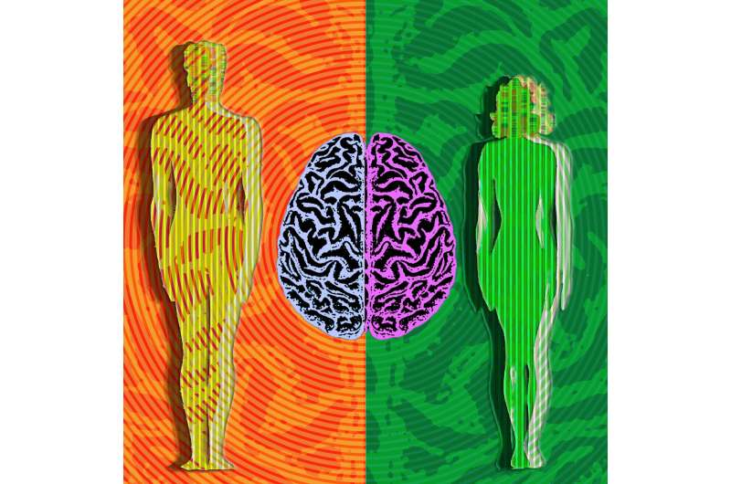 New findings on genes that drive male-female brain differences, timing of puberty