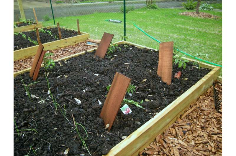 New method assesses lead hazard in soil