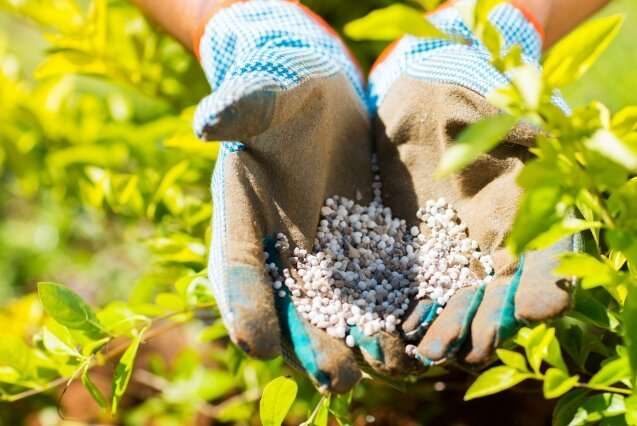 New method of fertilizer production can better suit the needs of farms in Africa and around the globe