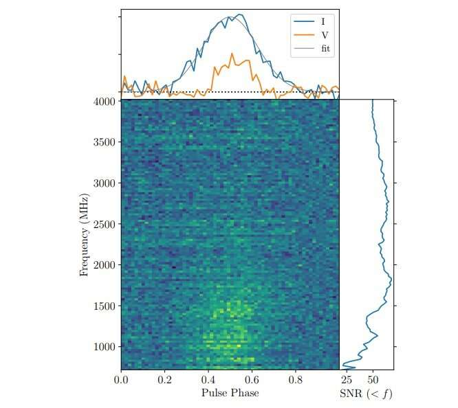 **New millisecond pulsar discovered