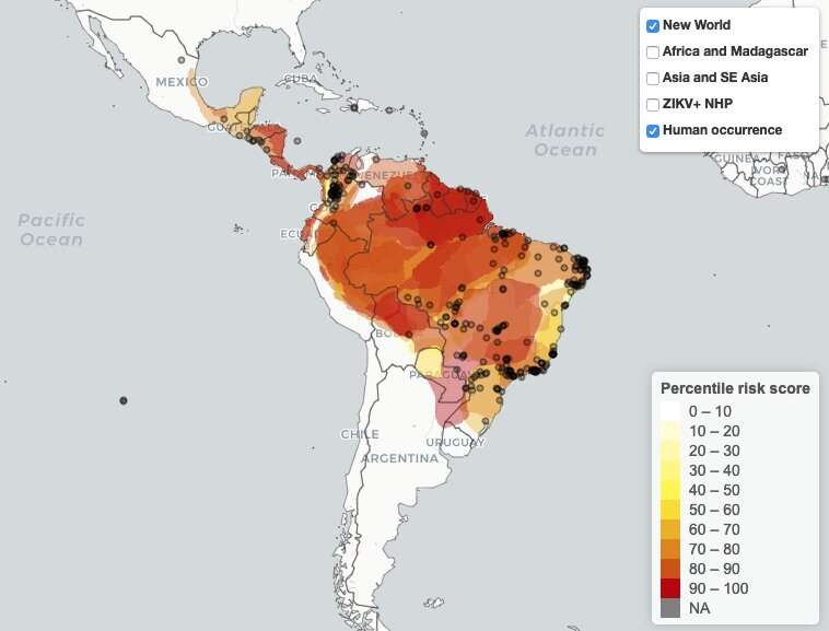 New model IDs primate species with potential to spread Zika in the Americas