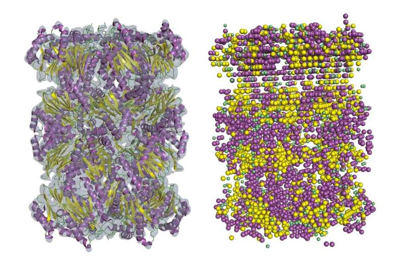 New software brings lower-resolution cryo-EM maps into focus