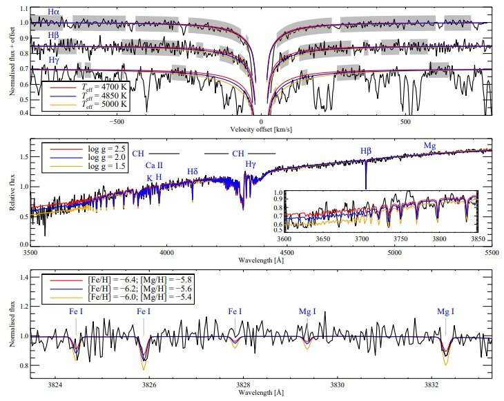 New ultra metal-poor star discovered