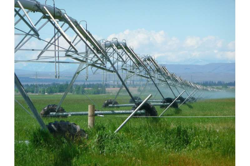 Novel camera system could provide cost-effective way to monitor crop temperatures