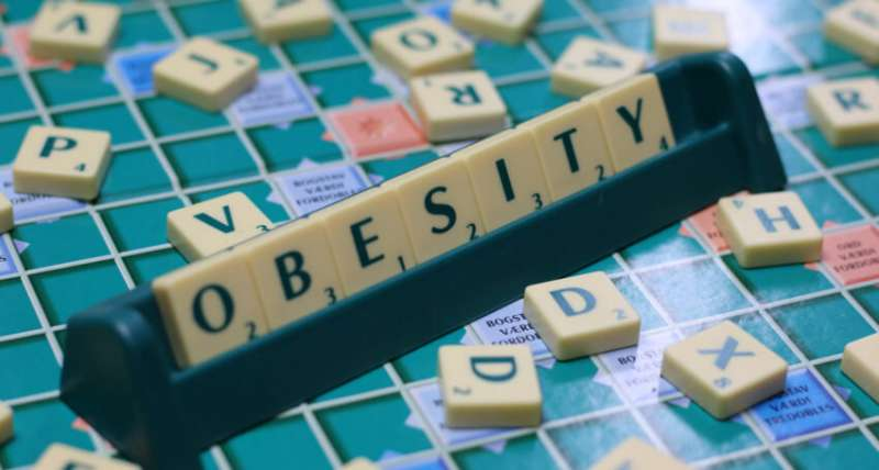 Obesity study exposes heavy toll of work-life balance