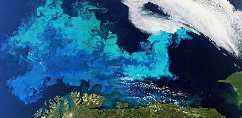Ocean ecosystems take two million years to recover after mass extinction – new research