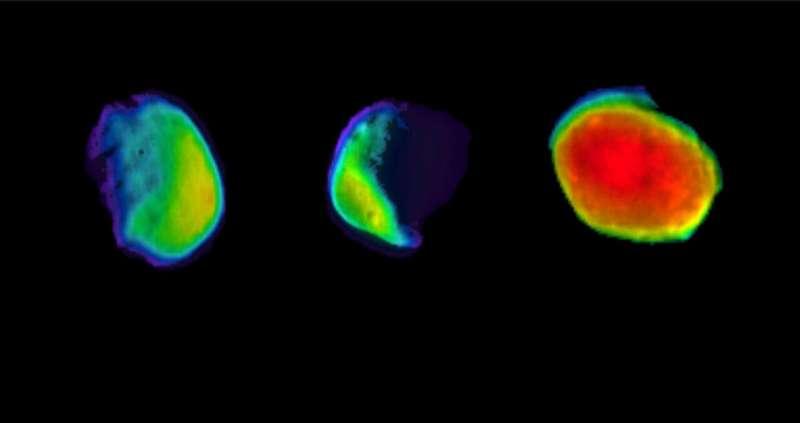 Odyssey's three views of Martian moon Phobos