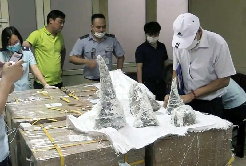 Officials found 125 kilos of rhino horn encased in plaster