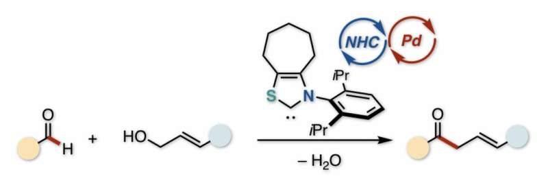 Partners in catalysis: An efficient route to unsaturated ketones