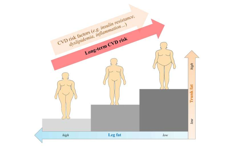 Pear-shaped is better for postmenopausal women, even if they are normal weight