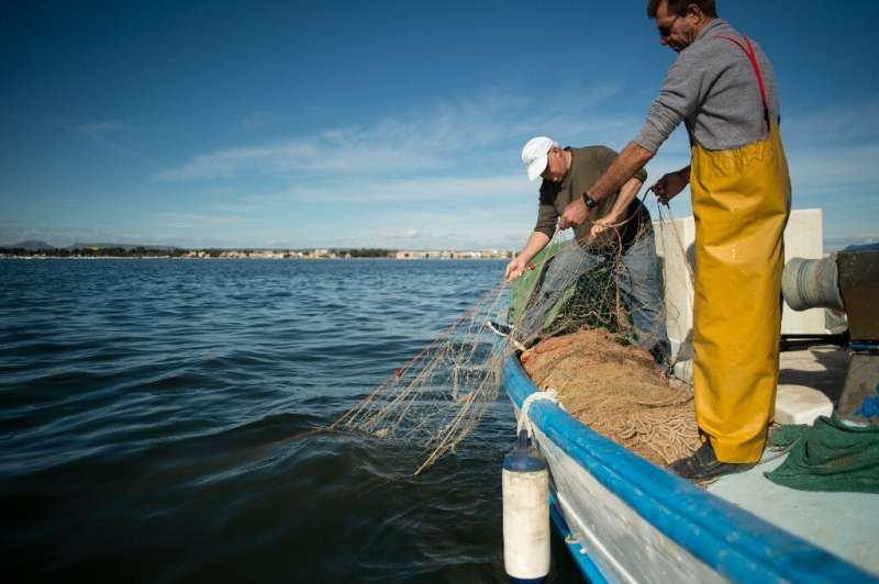 Pedro Martinez has been fishing the waters of Spain's Mar Menor since he was 14, but the collapse of the lagoon's ecosystem has