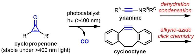 Photocatalytic generation of highly reactive alkynes under visible light conditions