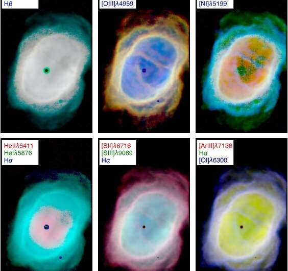 Planetary nebula NGC 3132 investigated with MUSE