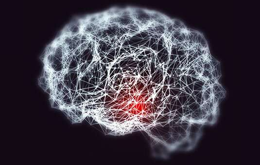 **Possible protective immune response in the brain may slow progression of Alzheimer's