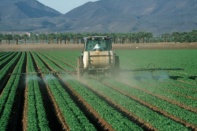 Prenatal pesticide exposure linked to changes in teen's brain activity