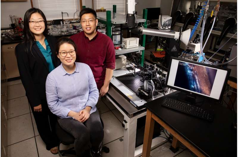 Printing flattens polymers, improving electrical and optical properties