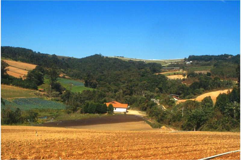 Protecting native vegetation on rural properties yields Brazil USD 1.5 trillion per year
