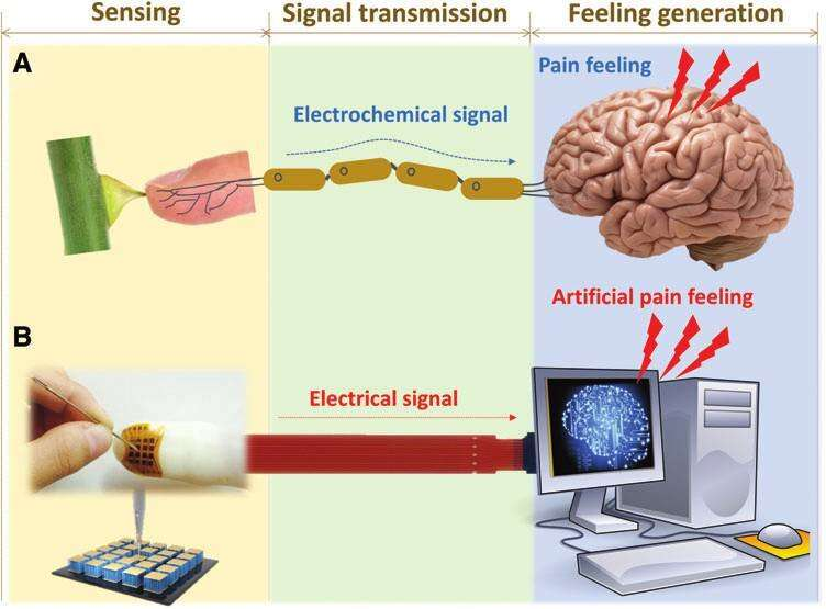 Psychosensory electronic skin technology for future AI and humanoid development
