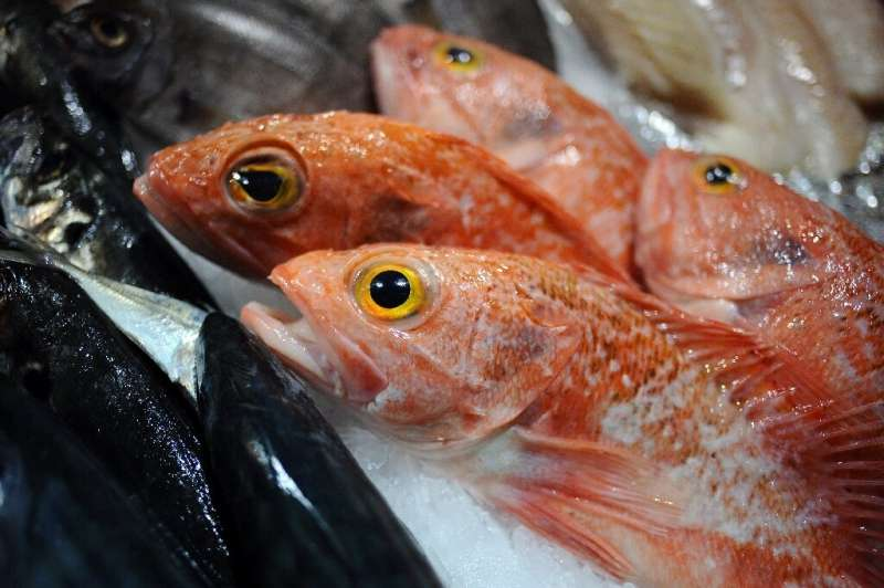 Red mullet is underappreciated in Britain, Barange said