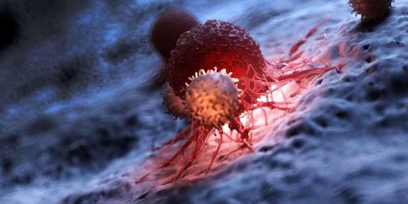Redundancies in T cells