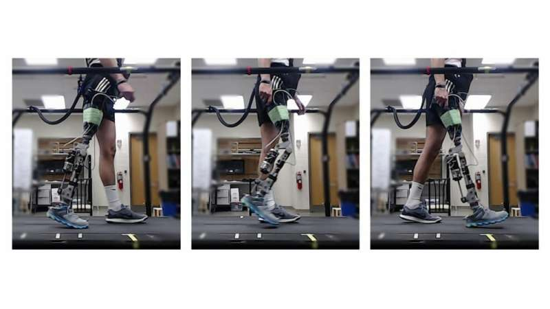 Reinforcement learning expedites 'tuning' of robotic prosthetics