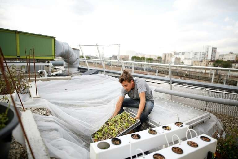Rethinking food production is also a response to climate change
