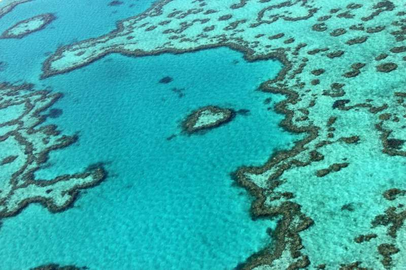 Rising sea temperatures linked to climate change have killed off large areas of coral in the 2,300-kilometre (1,400-mile) reef