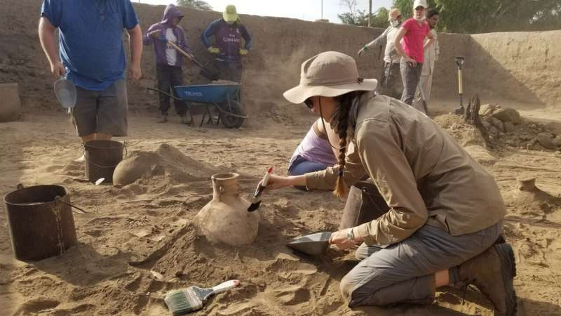 Rising second-year makes an unusual find at a Peruvian dig