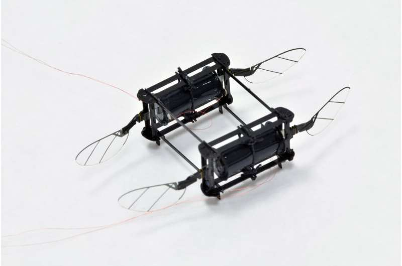 RoboBee powered by soft muscles