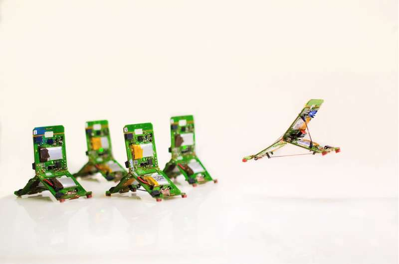 Robot-ants that can jump, communicate with each other and work together