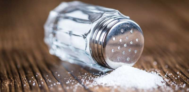 Salt is bad for you, but how it affects your body is still frontier science