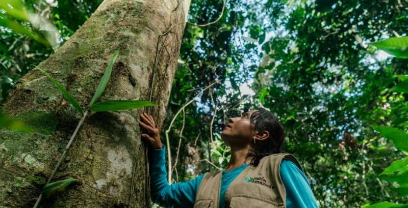 Saving nature vital to beating climate crisis, urges WWF