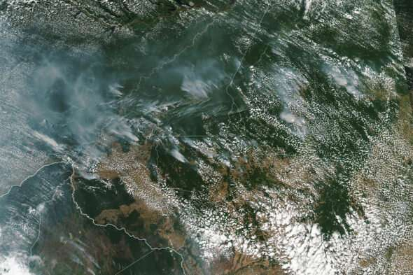 Scientist says Amazon rainforest fires could worsen every year because of deforestation