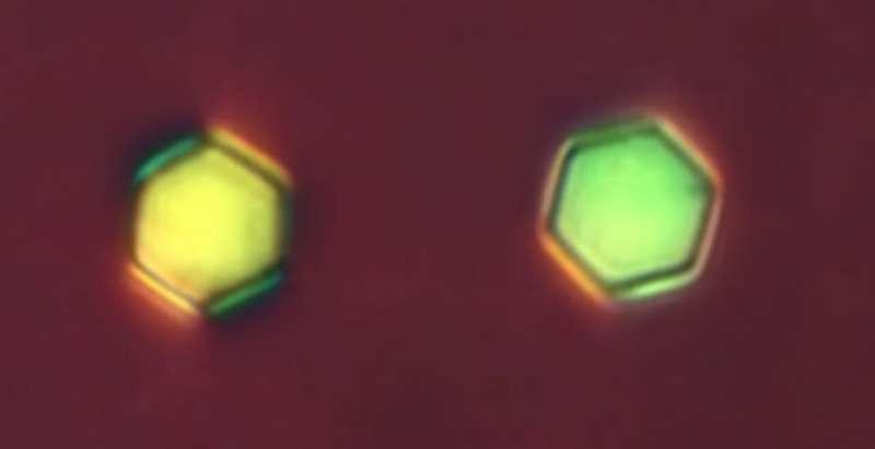 Scientists offer designer 'big atoms' on demand