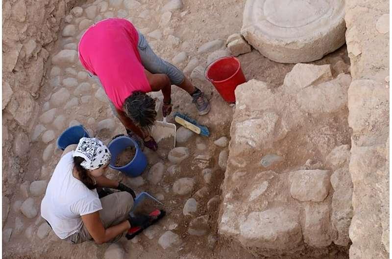 Shard reveals how Cyprus' ancient kingdoms managed economy