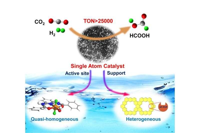 Single-atom catalyst based on homogeneous catalysis prototype for CO2 transformation developed
