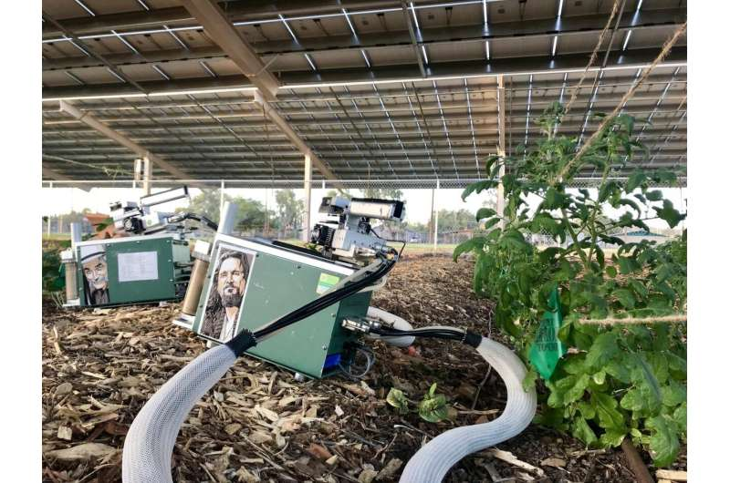 Solar panels cast shade on agriculture in a good way