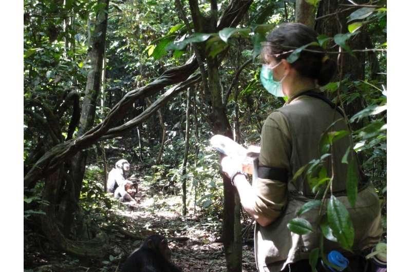 Studying animal cognition in the wild