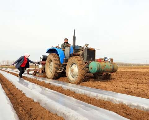 Study offers new insights on impacts of crop trading in China