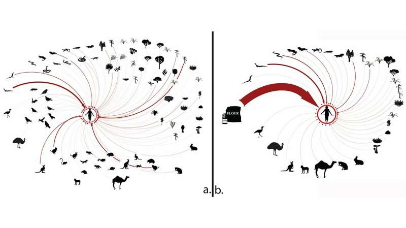 Study of human impact on food webs and ecosystems yields unexpected insights